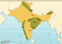 Les révoltes des forêts dans l'Inde coloniale