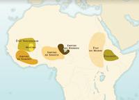 Résistances et soulèvements en Afrique sahélienne